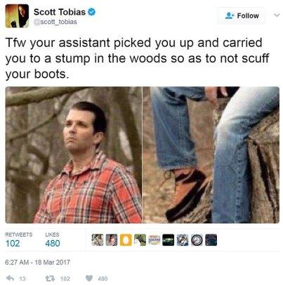 Don Jr tree stump